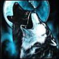 Midnightwolfling